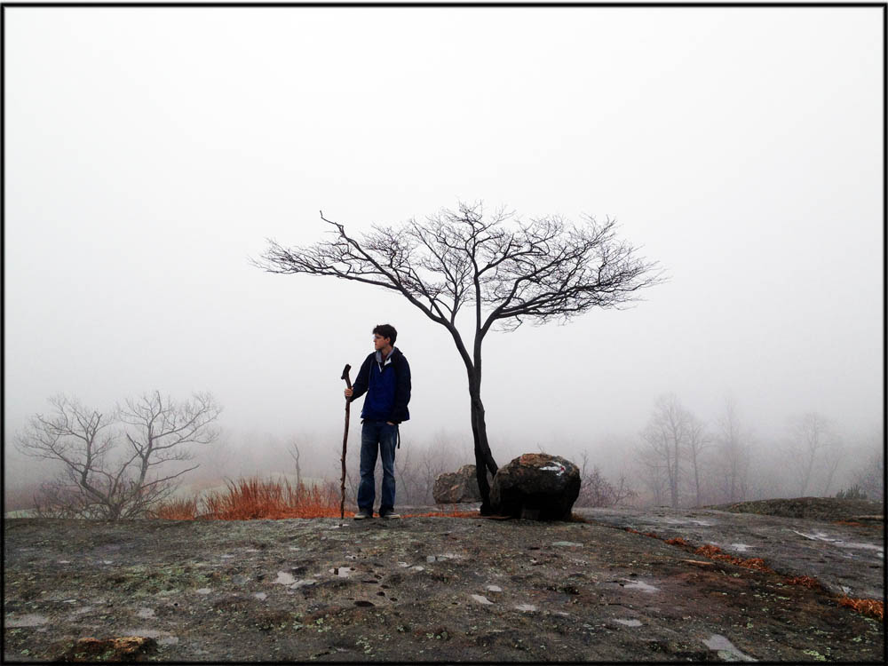 A foggy view and a lone tree and hiker on the Ramapo Dunderberg Trail