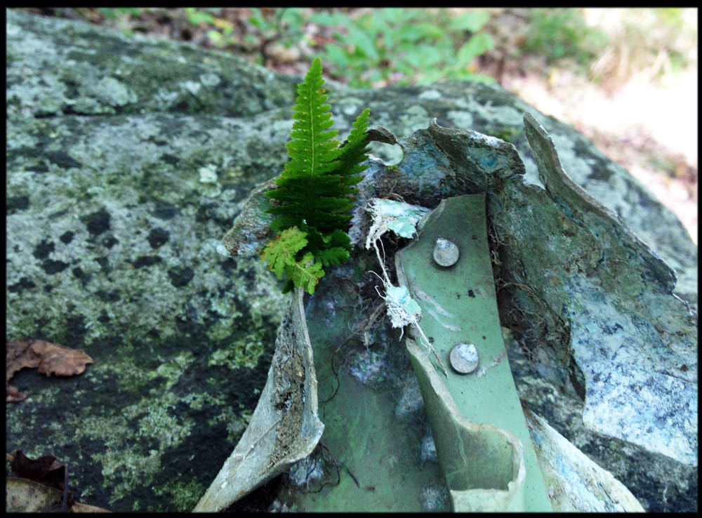 Broken up metal from a crashed airliner that went down in Harriman State Park in 1974.