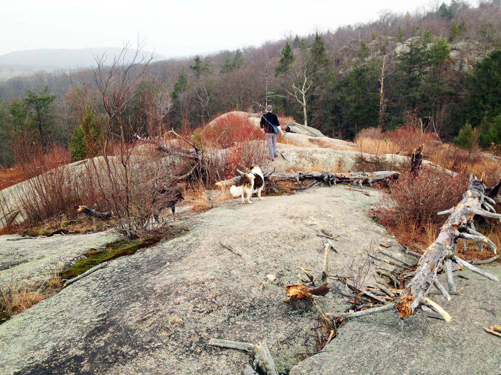 Hikers along the Ramapo Dunderberg trail in Harriman State Park New York