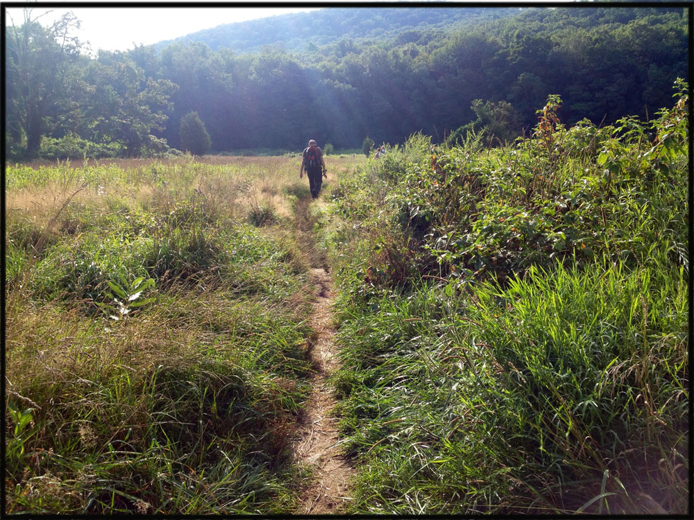 An unmarked trail leads from Elk Pen, in north Harriman State Park, to the Appalachian Trail.