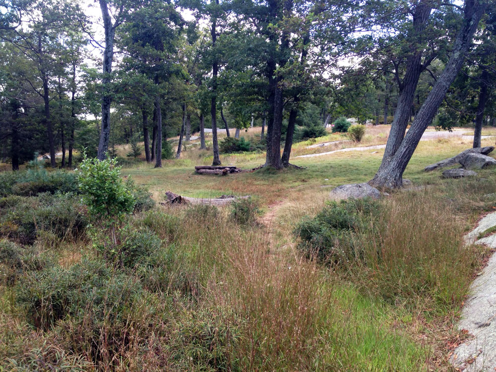 The grassy, level area surrounding the Balk Rocks shelter leanto, in Harriman State Park, is on the Ramapo-Dunderberg trail, and is easily accessed from a parking area on Route 106.