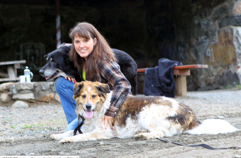 Suzy Allman with Charlie and Wolf, her two dogs, at Ward Pound Ridge Reservation.  Allman founded the website, MyHarriman.com, to share information about New York State's second-largest park, Harriman State Park.