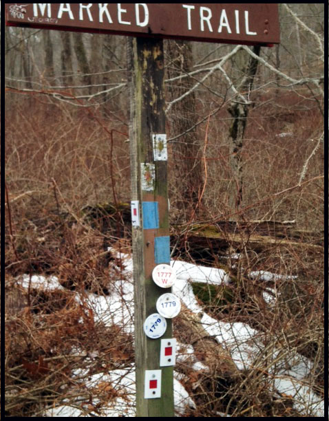 A mess of trail markers along the historic 1777 and 1779 trails in Bear Mountain State Park.