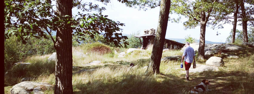 A man walks through the tall grass toward Big Hill lean-to at Harriman State Park New York on a warm summer day.