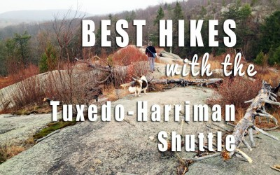 The Best Day Hikes in Harriman, Using the New Shuttle